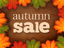 Autumn Sale Sign Stock Afbeelding