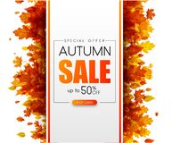 Autumn 50% sale. Promotion card with orange leaves. Autumn 50 sale. Special offer. Promotion card with orange leaves. Online shopping. Vector background. rr stock illustration