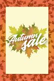 Autumn sale. Template of poster. Applicable for advertising and promotion, season offer, design gift card, flyer or Stock Image