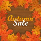 Autumn sale text banner with colorful seasonal fall leaves for shopping discount Royalty Free Stock Images