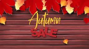 Autumn sale text vector banner design with colorful autumn season leaves fall in wooden background for seasonal. Promotion discount marketing. Black friday stock illustration