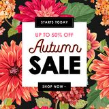 Autumn Sale Tropical Banner Promotion saisonnière avec les fleurs et les feuilles rouges d'asters Conception florale de calibre d Illustration Stock