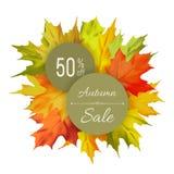 Autumn sale typographic Stock Photos