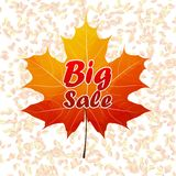 Autumn sale typography poster. plus EPS10 Royalty Free Stock Photography