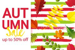 AUTUMN SALE up to 50 OFF banner typography design. Seamless autumn pattern with fall leaves. AUTUMN SALE up to 50 OFF banner typography design. Seamless autumn stock illustration