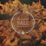 Autumn Sale Vector Banner auf Vektor-Photorealistic Unschärfe-Hintergrund Stockfotografie