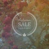 Autumn Sale Vector Banner auf Vektor-Photorealistic Unschärfe-Hintergrund Lizenzfreie Stockfotos