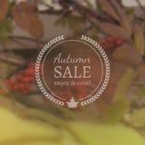 Autumn Sale Vector Banner på Photorealistic suddighetsbakgrund för vektor arkivfoto