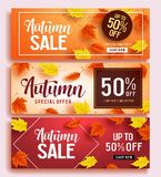 Autumn sale vector banner set template with colorful maple leaves background Stock Photo
