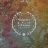 Autumn Sale Vector Banner sur le fond Photorealistic de tache floue de vecteur Photos libres de droits
