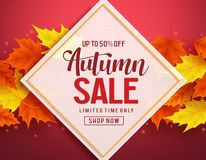 Autumn sale vector banner template with discount text in white frame Royalty Free Stock Photos