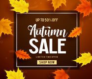 Autumn sale vector banner template with frame and sale text. In fall season leaves background for seasonal discount promotion template. Vector illustration royalty free illustration