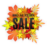 Autumn sale vector banner. Autumn typographical background with autumn leaves.  Fall leaf. Vector illustration EPS 10. Autumn sale vector banner Stock Photo