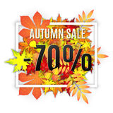 Autumn sale vector banner. Autumn typographical background with autumn leaves. Autumn typographic. Fall leaf. Vector illustration EPS 10. Autumn sale -70 Stock Image