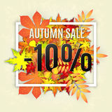 Autumn sale vector banner. Autumn typographical background with autumn leaves. Autumn typographic. Fall leaf. Vector illustration EPS 10. Autumn sale -10 Stock Photography