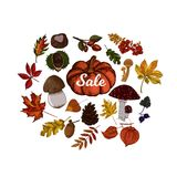 Autumn sale vector illustration. Fruits of fall botanic sketches Stock Photos