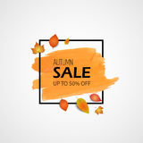 Autumn sale. Vector illustration. Orange brush stroke and black frame with yellow realistic leaves. For sale banner. Stock Photos