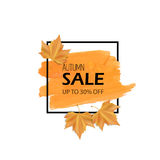 Autumn sale. Vector illustration. Orange brush stroke and black frame with yellow realistic leaves. For sale banner. Stock Image
