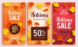 Autumn sale vector poster design template with 50% off sale text. And colorful maple leaves background for fall season shopping discount promotion. Vector Royalty Free Illustration