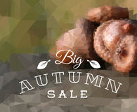 Autumn sale vector retro poster. With abstract blurred fall background Stock Photos