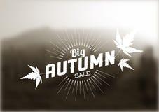 Autumn sale vector retro poster Stock Images