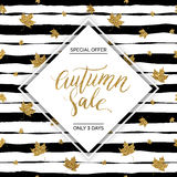 Autumn sale vector text Stock Photography