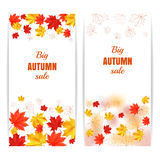 Autumn sale vertical banner. Autumn orange, red, yellow maple leaves bordered on white background. Set of cartoon vector illustrations. Concept for autumn Royalty Free Stock Image