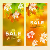 Autumn Sale, 2 vertical banners Stock Photography