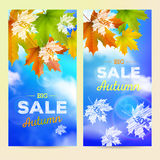 Autumn Sale, 2 vertical banners Royalty Free Stock Photography