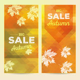 Autumn Sale, 2 vertical banners Stock Images