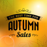 Autumn sale vintage  typography poster Stock Photography