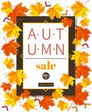 Autumn sale vintage vector typography poster with autumn colour leaves. Autumn sale vintage vector typography poster with autumn color leaves. Vector Royalty Free Stock Image