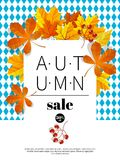 Autumn sale vintage vector typography poster with autumn colour leaves. Autumn sale vintage vector typography poster with autumn color leaves. Vector Stock Images