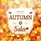 Autumn sale vntage signboard. EPS 10 Stock Photos