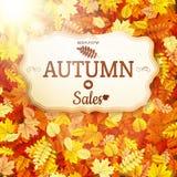 Autumn sale vntage signboard. EPS 10 Stock Image