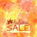 Autumn sale Royalty Free Stock Photos