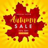 Autumn sale white banner. Fall sale design card template with lettering Special Offer 50% off shop now. Vector illustration with colorful autumn leaf and yellow Stock Photos