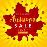 Autumn sale white banner Stock Photos