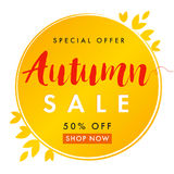 Autumn sale white banner. Autumn sale vector card template with lettering Special Offer 50% off shop now. Fall sale poster, card, label, banner design Stock Images