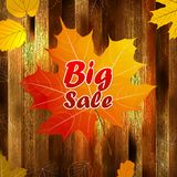 Autumn sale wood and Leaves poster. plus EPS10 Royalty Free Stock Image