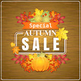 Autumn sale. On wooden background, vector illustration Stock Photography