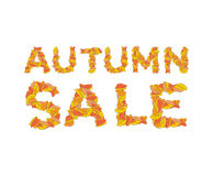 Autumn sale. Yellow leaves of ABC. autumnal alphabet. Letters of. Fallen leaves Stock Photo