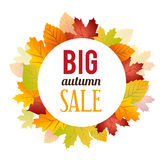 Autumn Sales Background Royalty-vrije Stock Foto's