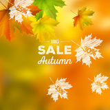 Autumn Sales Background Imagenes de archivo