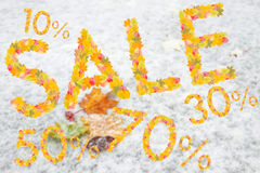 Autumn Sales Background Stock Photography