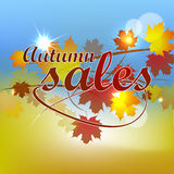 Autumn sales background Stock Image