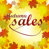 Autumn sales background Stock Photo