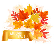 Autumn Sales Banner With Colorful Leaves. Stock Images