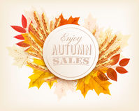 Autumn Sales Banner With Colorful Leaves and wheat. royalty free illustration