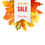 Autumn sales banner Stock Photography